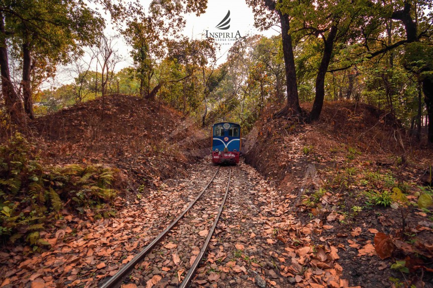 Toy Train from Siliguri to Rongtong