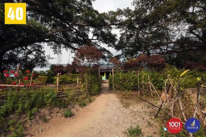 Buxa fort path, Dooars, West Bengal.