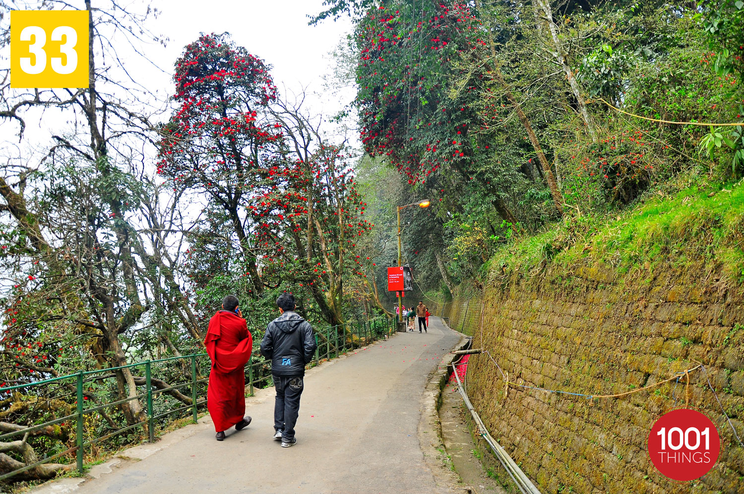 Chowrasta and Mall, Darjeeling , featured image