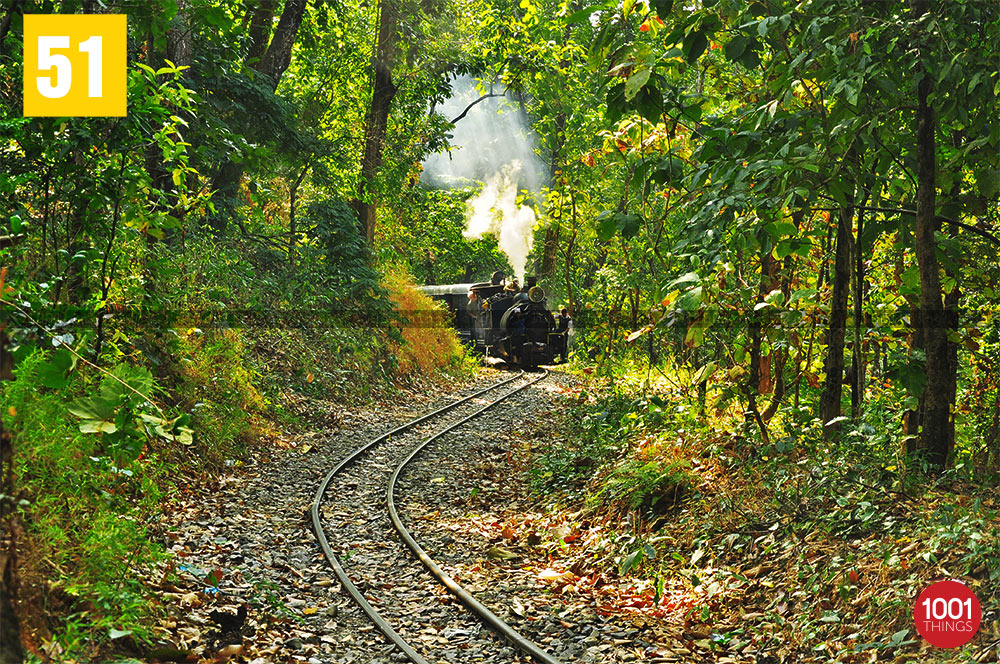 Darjeeling Himalayan Railway at Sukna Forest