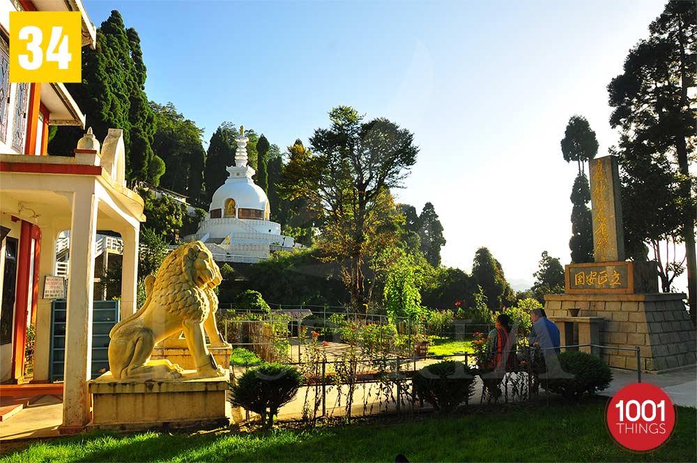 Japansese Temple  Garden - Darjeeling