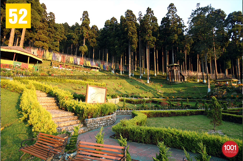 Lamhatta featured image, Darjeeling