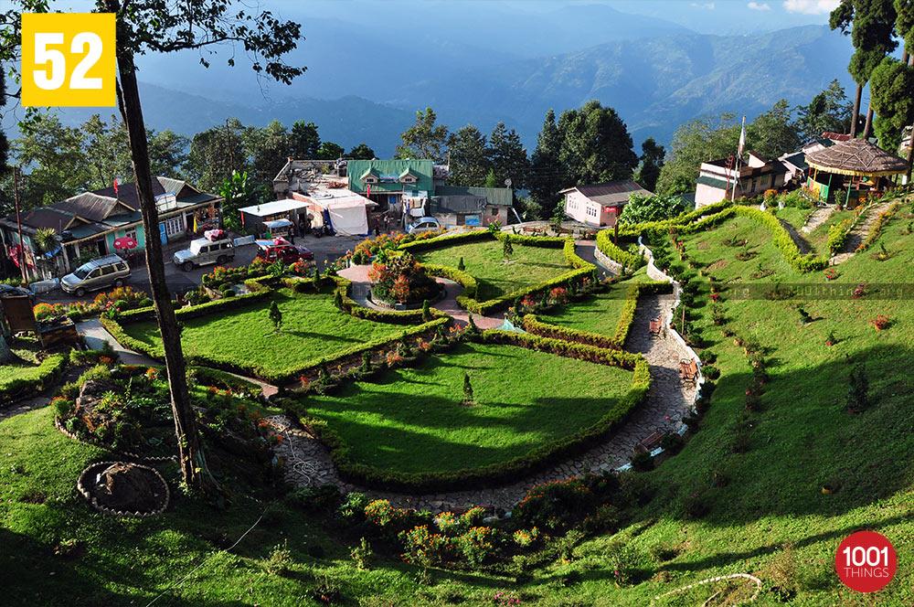 Lamahatta garden, Darjeeling