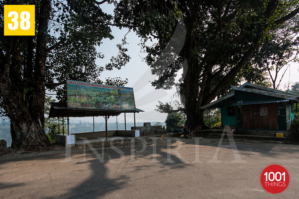 Mayalu Golai View Point , Darjeeling