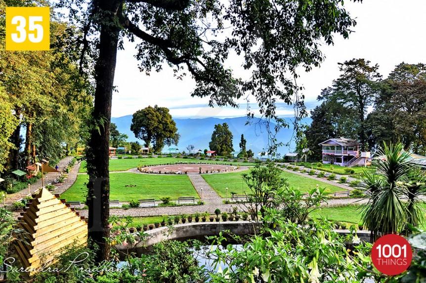Shrubbery Nightingale Park, Darjeeling , Featured Image