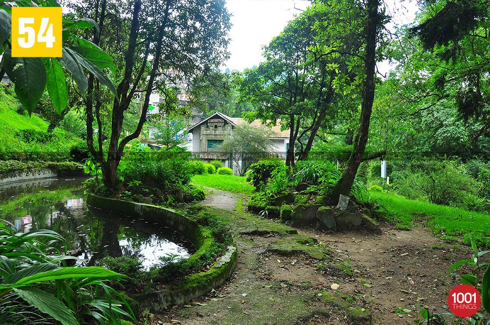 Upper Lloyd Botanical Garden, Darjeeling