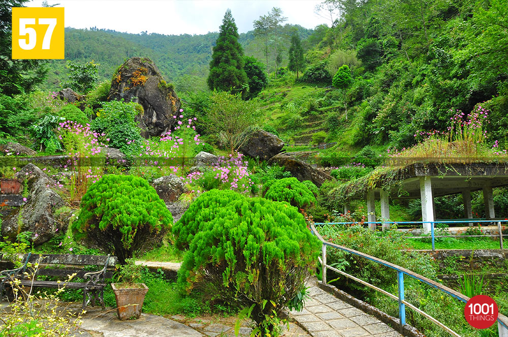 Beautiful Rock Garden, Darjeeling