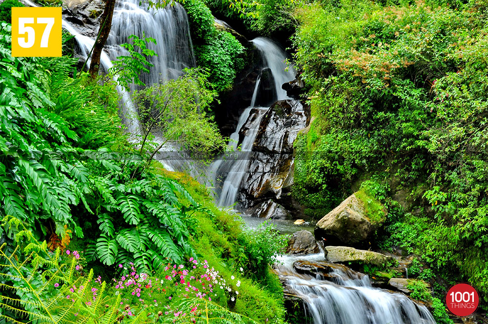 Beautiful waterfall at Rock Garden, Darjeeling