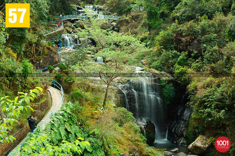 Zig zag bridge at Rock Garden, Darjeeling