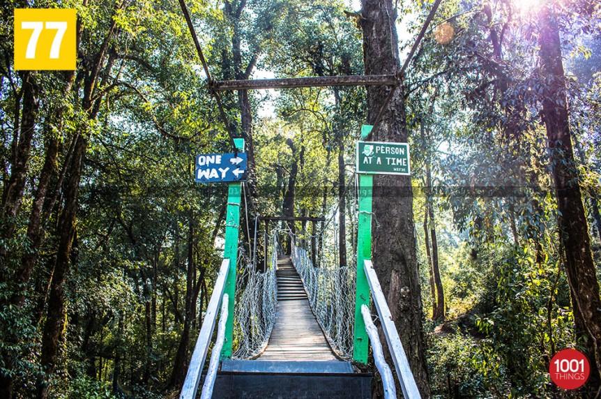 Hanging bridge canopy walkway, lolegaon