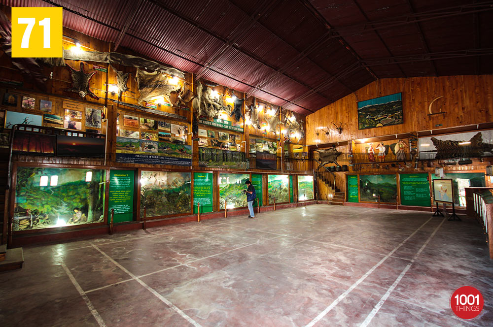 Nature Interpretation Centre, Kalimpong