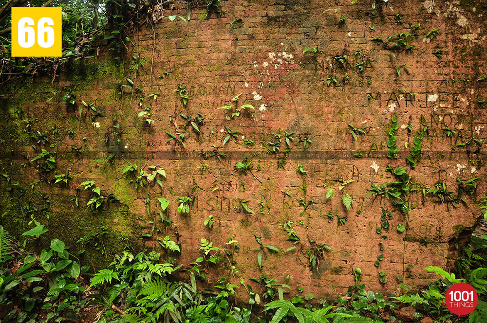 Wall of Nalraja Garh