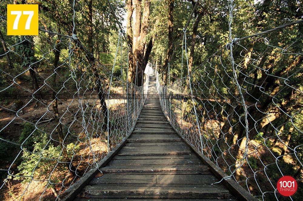 Wooden walkway at Hanging bridge, lolegaon
