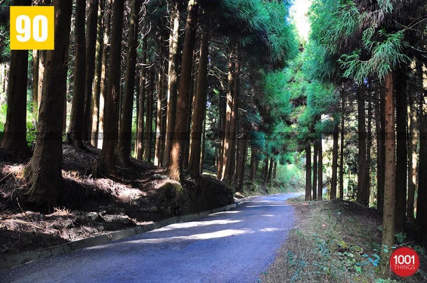 Dhotrey, Darjeeling