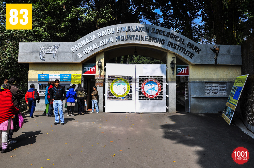Main entrance at The Padmaja Naidu Himalayan Zoological Park