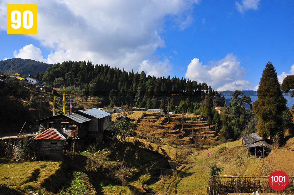 Top view of Dhotrey, Darjeeling