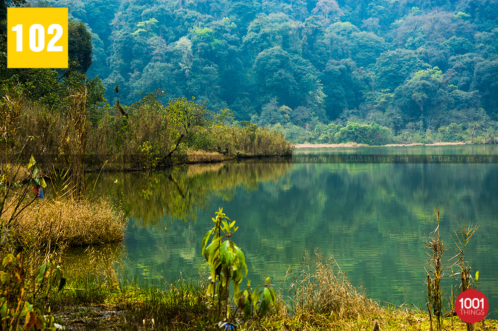 Clear water at Khecheopalri Lake Sikkim