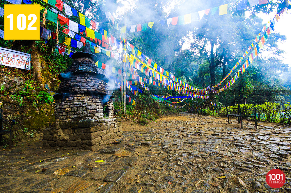 Prayer Flags at Khecheopalri Lake Sikkim