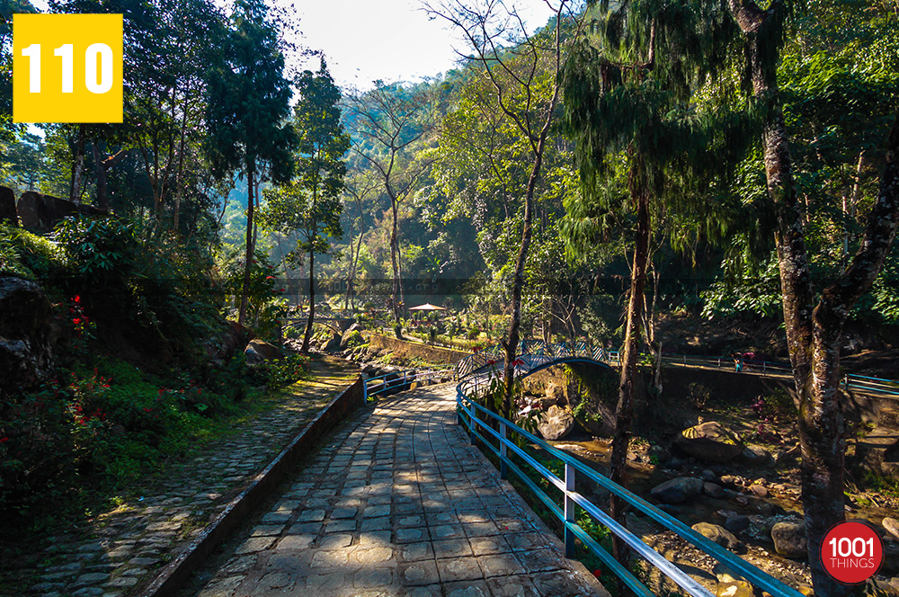 Gangamaya-park-Darjeeling-first-sight