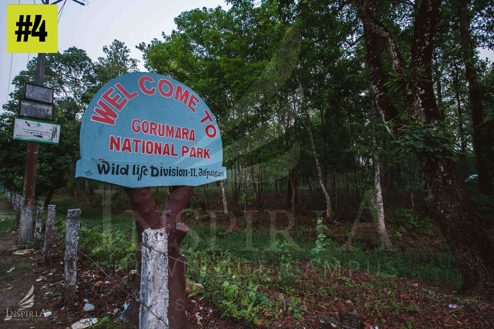 lataguri Gateway to Gorumara National Park