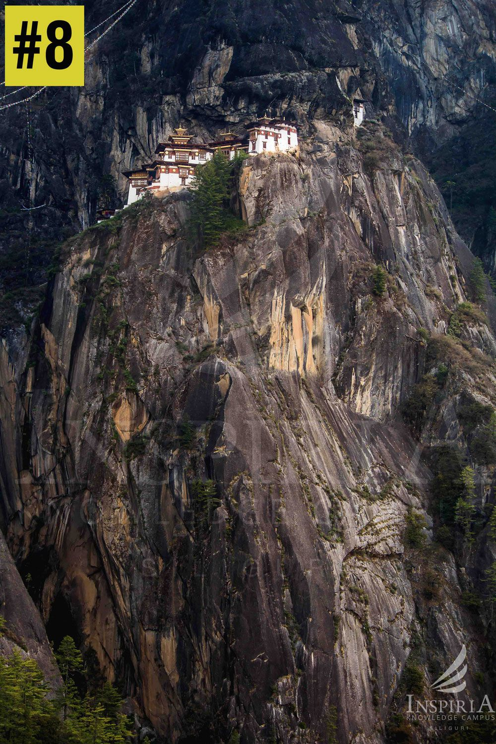 vertical-view-of-taktsang-monestary-bhutan