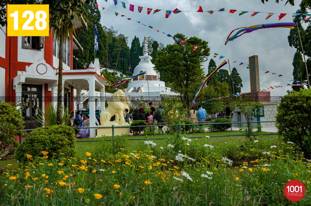 Buddha-Jayanti-at-Peace-Pagoda
