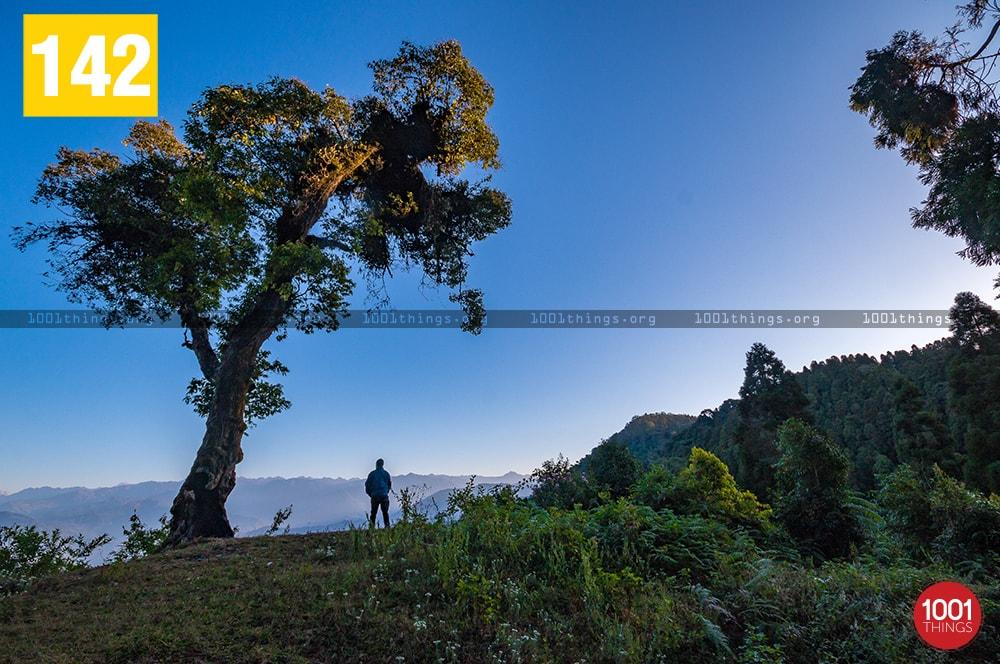 Rikisum, Kalimpong