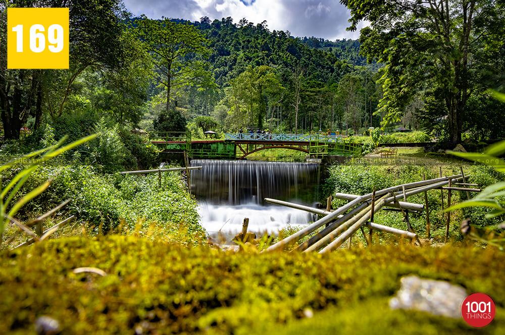 Manjushree Park, Darjeeling=