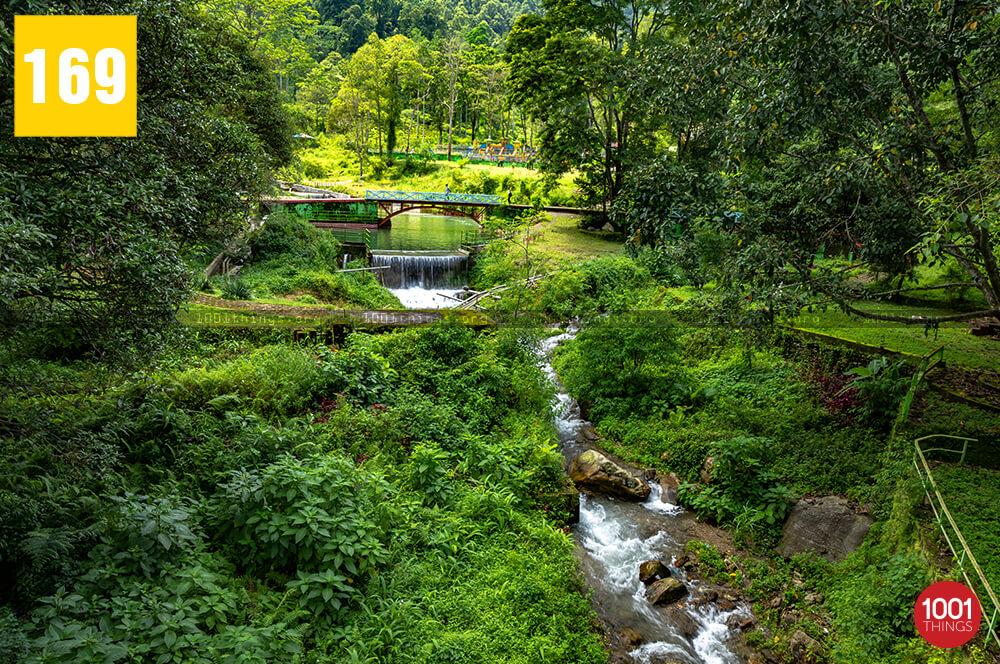 park in darjeeling=