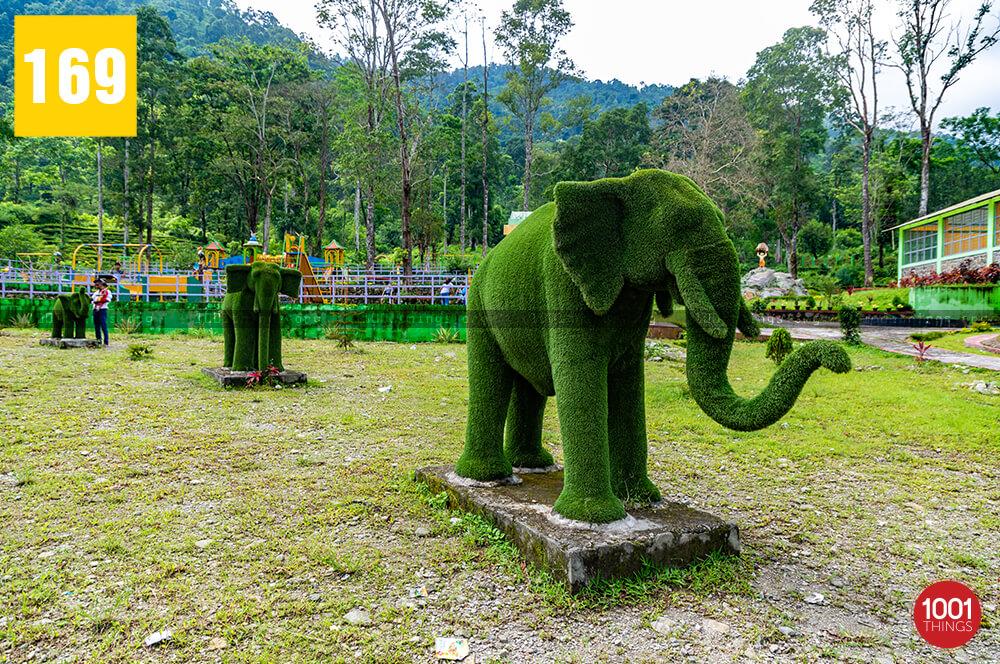 Manjushree Park In Darjeeling westbengals=