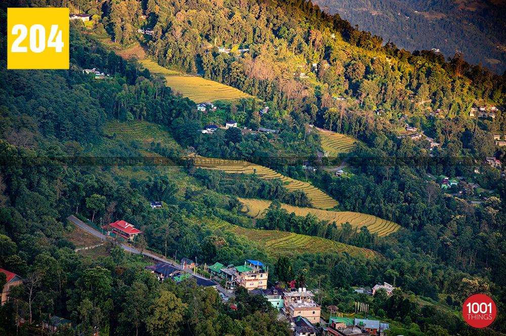 Mankhim Hill Top Sikkim2
