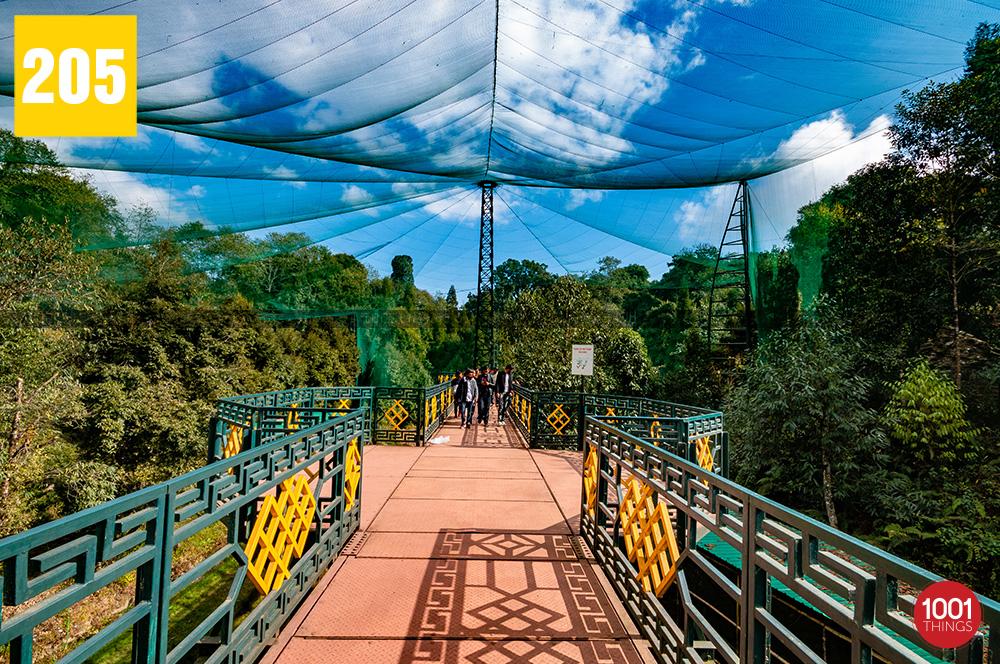Sidkeong Tuluk Bird Park