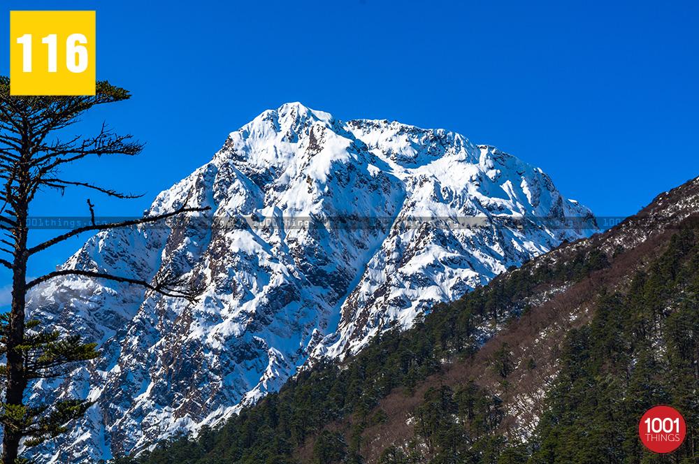 Yumthang Valley11 1