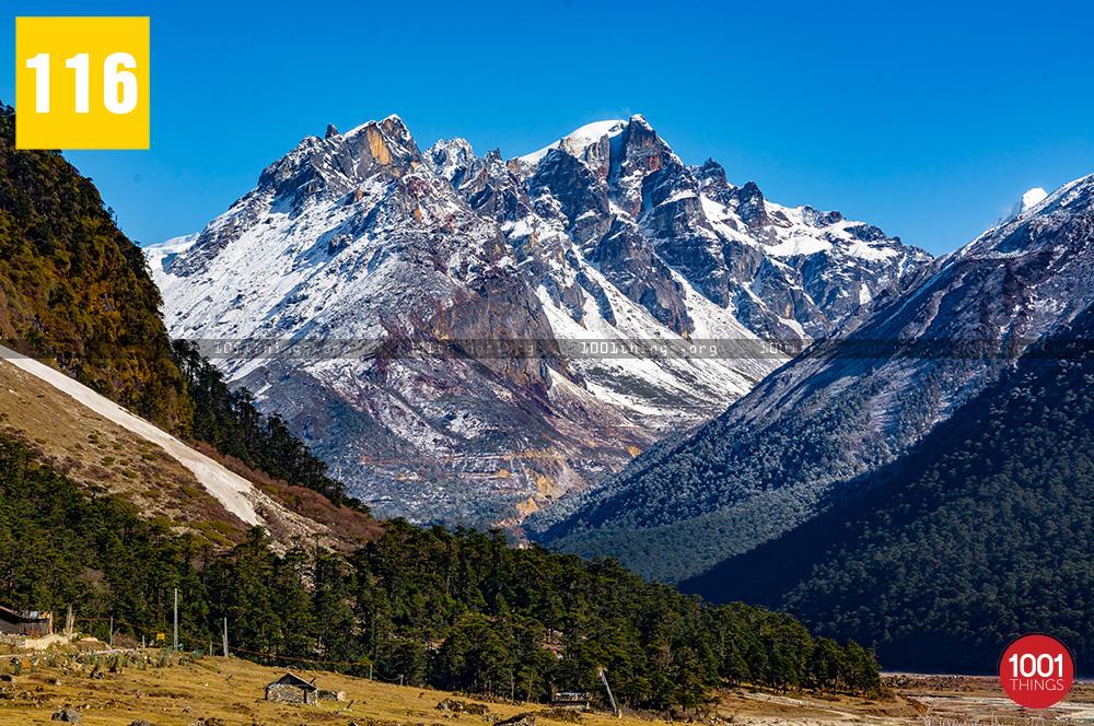 Yumthang Valley13 1