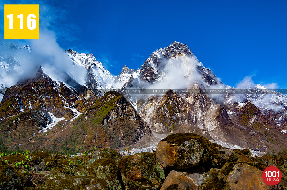 Yumthang Valley15 1