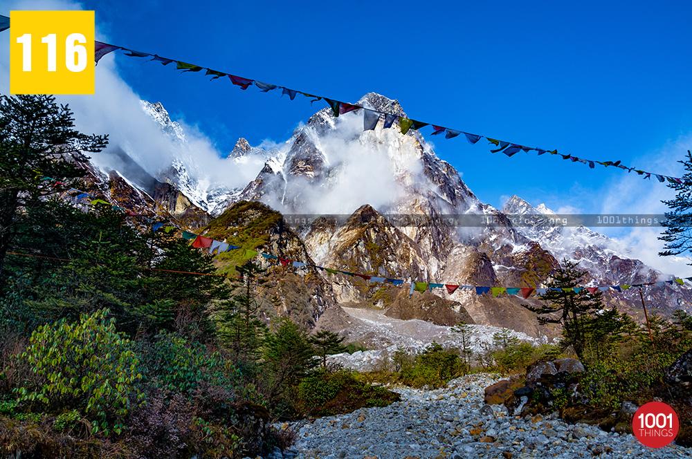 Yumthang Valley16 1