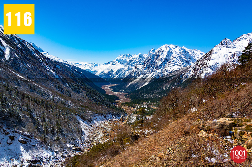 Yumthang Valley8 1