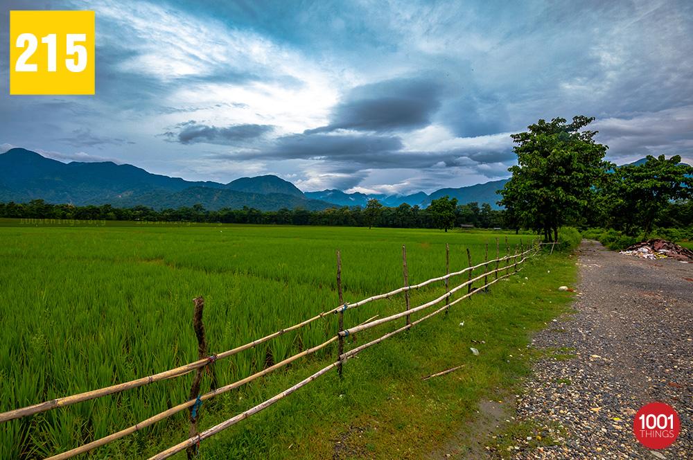 Bhutan Ghat5