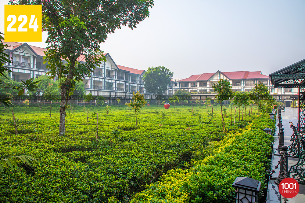 Luxury Resort in Siliguri