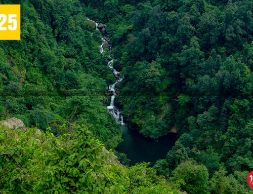 Pagla Jhora Waterfalls Is One Of The Flourishing Tourist Attractions in North Bengal