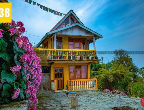 Rishyap Kalimpong:Treat Yourself to Getaway Into Nature's Lap at Rishyap